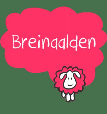 Breinaalden